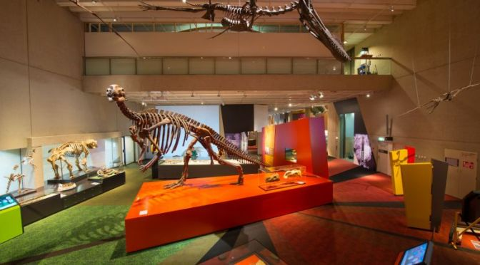 Museum for Teens: Lost Creatures