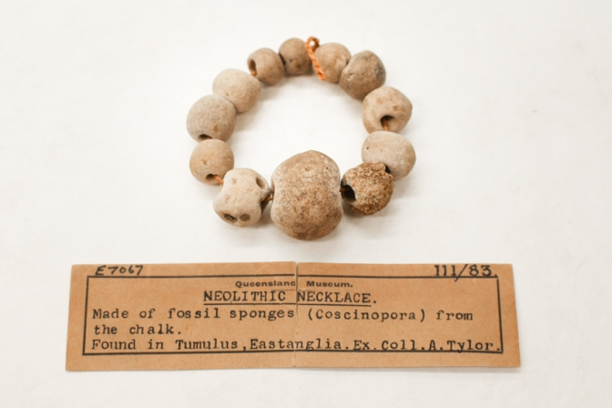 Collecting the Deep Past: Queensland Museum's archaeology collection.