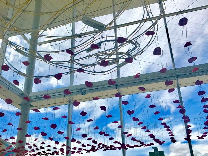 ALG poppy ceiling.jpg