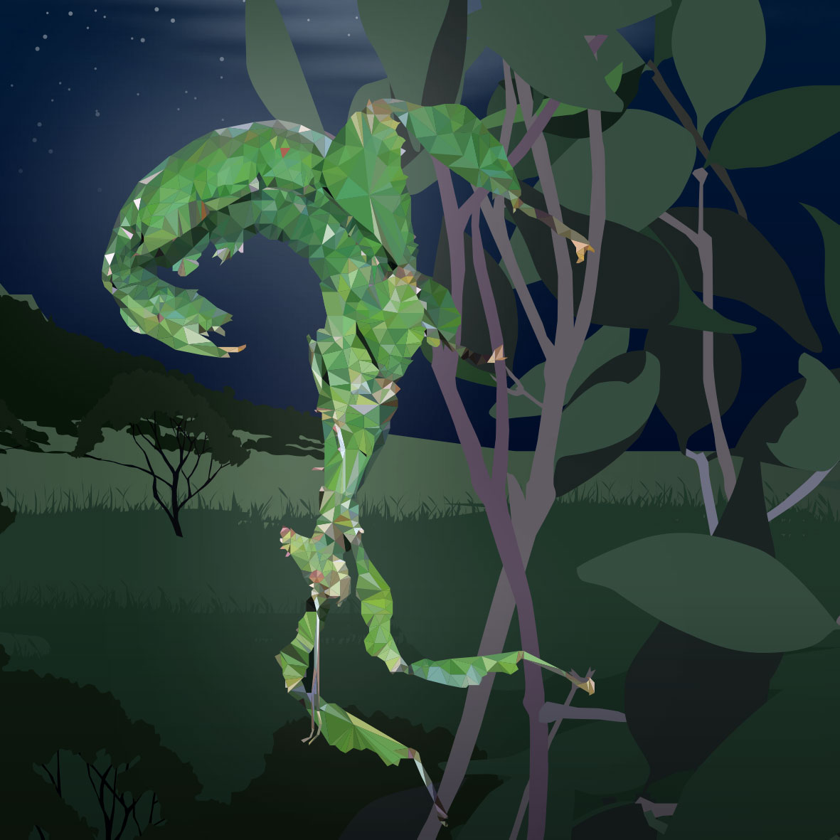 WILD-STATE-Owen-Forest-Leaf-insect-(not-used)