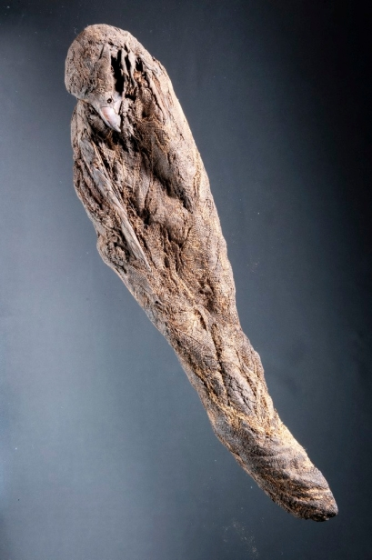 Hawk, Mummified. *** Local Caption *** Egyptian Object